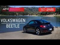 Видео тест-драйв Volkswagen Beetle 2014 от Авто-плюс