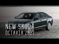Skoda Octavia 2017 года в обзоре программы