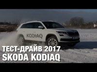 Тест драйв и обзор Skoda Kodiaq