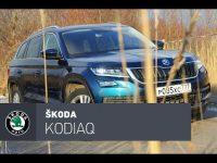 Тест-драйв Skoda Kodiaq от  CarsGuru