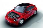 Volkswagen Beetle 25