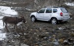 Renault Duster 28