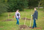 Посади дерево - спаси планету Волгоград Фото 01