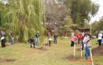 Посади дерево - спаси планету Волгоград Фото 06