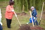Посади дерево - спаси планету Волгоград Фото 07
