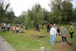 Посади дерево - спаси планету Волгоград Фото 15