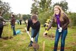 Посади дерево - спаси планету Волгоград Фото 23