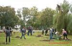Посади дерево - спаси планету Волгоград Фото 26