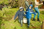 Посади дерево - спаси планету Волгоград Фото 31