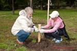 Посади дерево - спаси планету Волгоград Фото 34