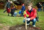 Посади дерево - спаси планету Волгоград Фото 35
