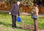 Посади дерево - спаси планету Волгоград Фото 41