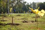 Посади дерево - спаси планету Волгоград Фото 53