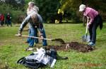 Посади дерево - спаси планету Волгоград Фото 55