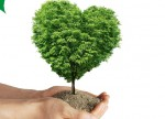 Компания АГАТ уже готова к посадке деревьев «Посади дерево – спаси планету»!