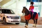 Презентация Range Rover 2013 в Волгограде Фото 001