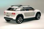 концепт-кар Citroen Cactus C4  2013 - фото 11