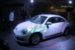 Презентация Volkswagen Beetle Волга-раст Фото 14