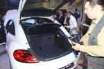 Презентация Volkswagen Beetle Волга-раст Фото 33