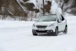100 тысячный Peugeot 2008 2014 Фото 05