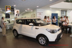 Hamsters Party KIA Soul Фото 12