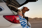 Subaru Outback 2015 Фото 20