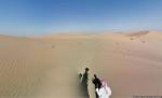 Google съемка пустыни верблюд Фото 02