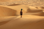 Google съемка пустыни верблюд Фото 04