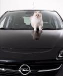 Кот Карла Лагерфельда Opel Corsa 2015 Фото 01