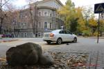 Тест-драйв Skoda Rapid Волгоград Фото 43