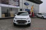 Ford EcoSport Волгоград Арконт 35