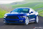 Saleen 302 White Label Mustang 2015  Фото 05