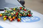 Цветочный патруль от Skpda Фото 11