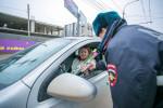 Цветочный патруль Фото 02