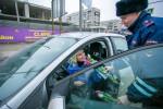 Цветочный патруль Фото 07