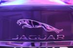 Jaguar XF 2016 в Волгограде Фото 33