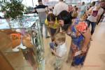 Детский праздник от Тойота Волгоград Фото 25