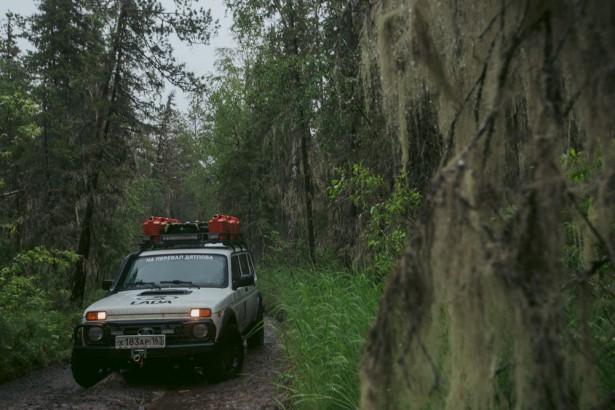 Дикарии перевал Дятлова 2016 Фото 07