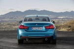 BMW 4-Series Coupe Gran Coupe Convertible 2018 Фото 14