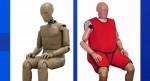 Американцы набирают вес, краш-тестовые манекены не отстают