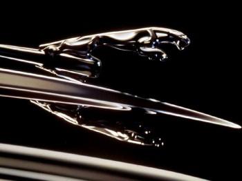 Автомобили Jaguar посчитали самыми невыгодными для страховых компаний