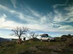 Subaru Legacy Outback 2017 Фото 13