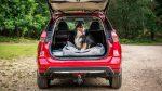 Nissan Xtrail 2018 получит специальный пакет опций для любителей собак