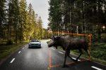 Volvo планирует, что автономные автомобили составят одну треть ее продаж к 2025 году