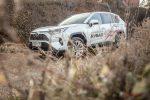 Тест-драйв Toyota RAV4 2019 Волгоград 20