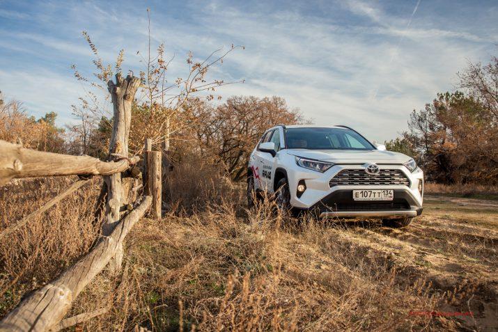 Тест-драйв Toyota RAV4 2019 Волгоград 23
