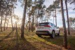 Тест-драйв Toyota RAV4 2019 Волгоград 29
