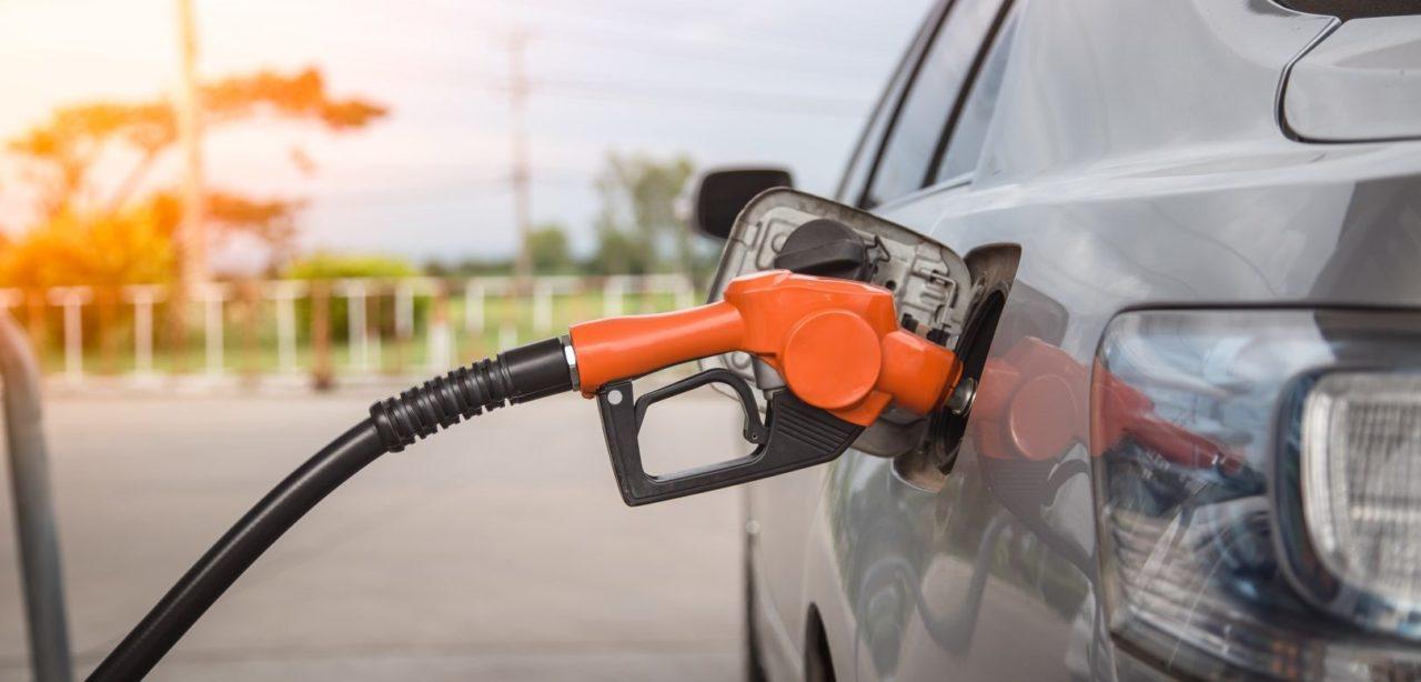 Mazda намерена использовать биотопливо.